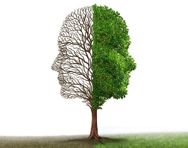 tree graphic representing bipolar